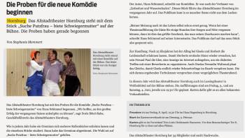 Salzgitter_Zeitung_Suche_Putzfrau_11012016
